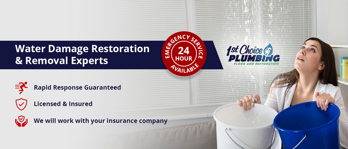 Water Damage Restoration & Removal Experts