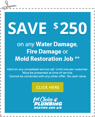 Save $250 on any Water Damage, Fire Damage or Mold Restoration Job