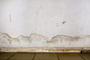 Our Flood Restoration Experts in Solana Beach CA Can Figure Out if Your Water Damage is New or Old