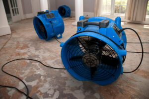 3 Qualities to Look for in a Good Flood Restoration Company in Escondido CA