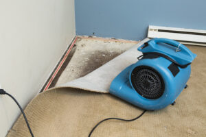 Get Your Flooded Property in Carlsbad CA Back to a Safe and Operable State