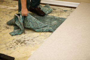 Failing to Resolve Water Damage Can Lead to Serious Consequences. Call a Cardiff CA Flood Restoration Company Now