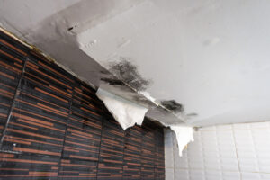 Did You Know that Water Damage in San Marcos CA Can Cost You Thousands of Dollars?