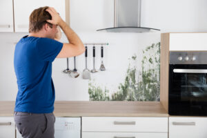 Mold Restoration in Del Mar CA is a Difficult Process if You Do it Alone