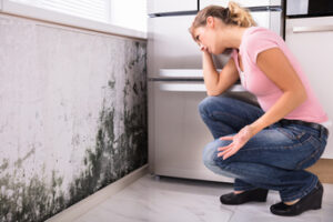 5 Interesting Facts About Mold Damage in Southern California That you Didn't Know