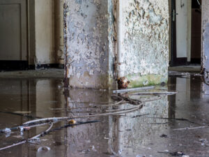 You're Never Alone Throughout the Flood Restoration Process in Encinitas CA