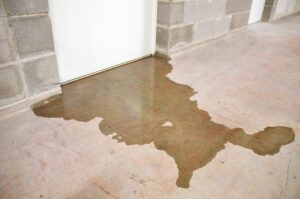Never Ignore Signs of Leaking Water in Vista CA