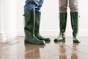 Some Important Things You Should Know During a Household Flood in Encinitas CA