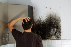 Avoid DIY Black Mold Removal in Your Carlsbad CA Home!