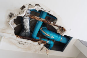 Hire Knowledgeable Technicians to Help You with Water Damage in Fallbrook CA