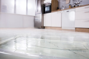 Suspect a House Leak in Escondido CA? We Can Perform Water Leak Detection Service