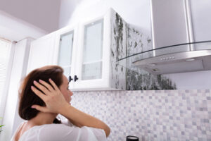 Is Your Home Infested with Mold in San Marcos CA?